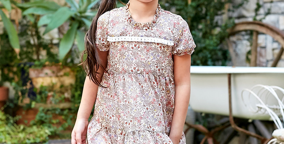 Floral Embroidered A line dress