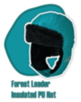 forest-leader-hat.png