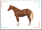 resources pack cheval image.png
