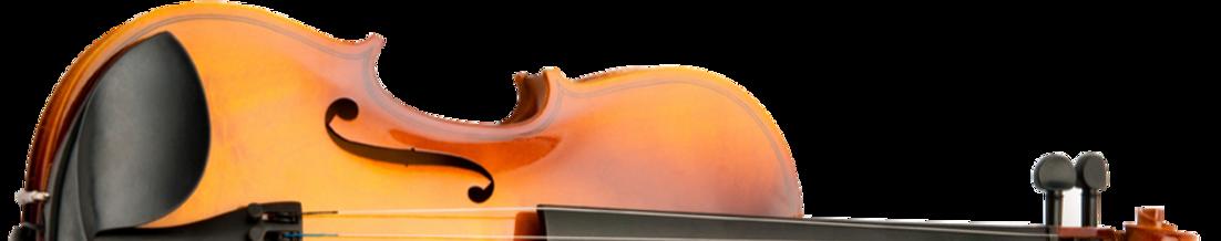 violin-4_edited.png