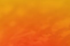 650x980-Naranja.png