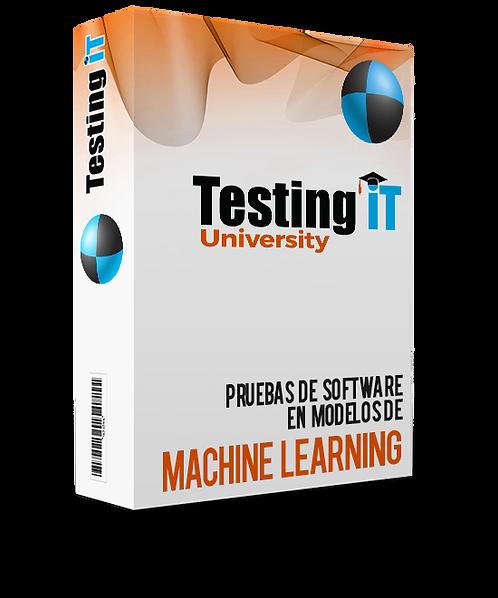 Machine Learning Testing