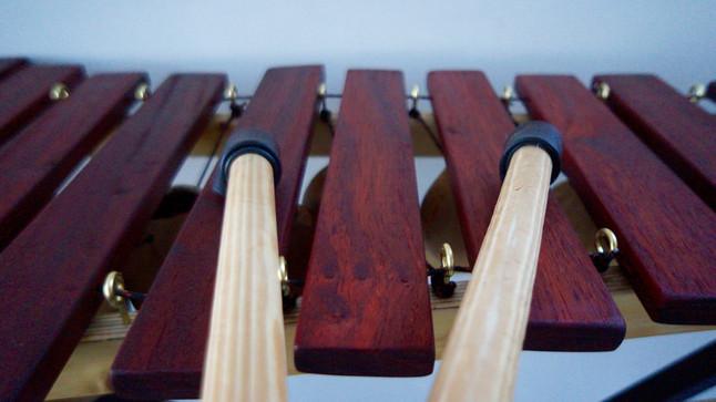 Réaliser un xylophone