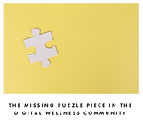 Missing puzzle ttyl.png