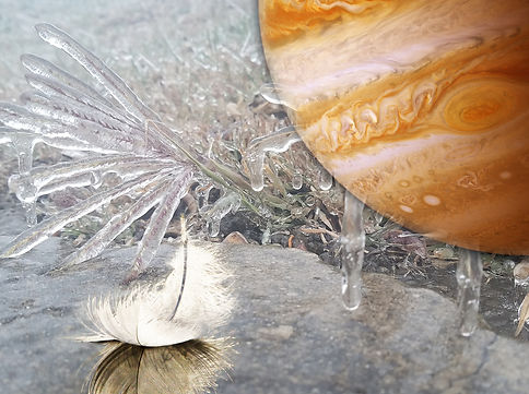 hope is the thing with feathers..jpg