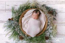 terrylowedding_newborn_Lena