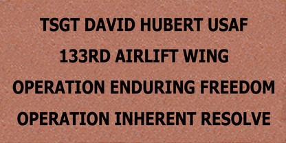 Brick #15 David Hubert.jpg