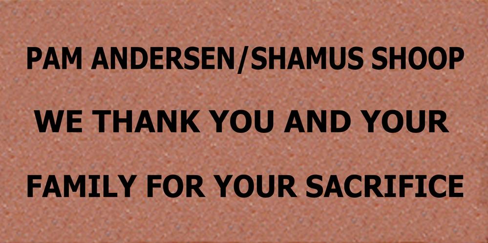 Brick #1 Pam Anderson & Shamus Shoop.png