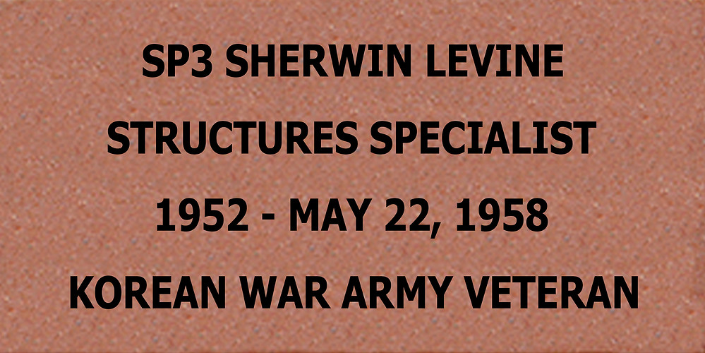 Brick #8 Sherwin Levine.jpg