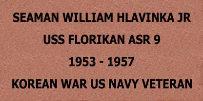 Brick #38 William Hlavinka JR.jpg