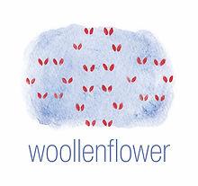Woollenflower