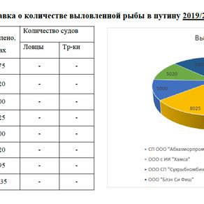 Рыбная путина 2019-2020 гг.