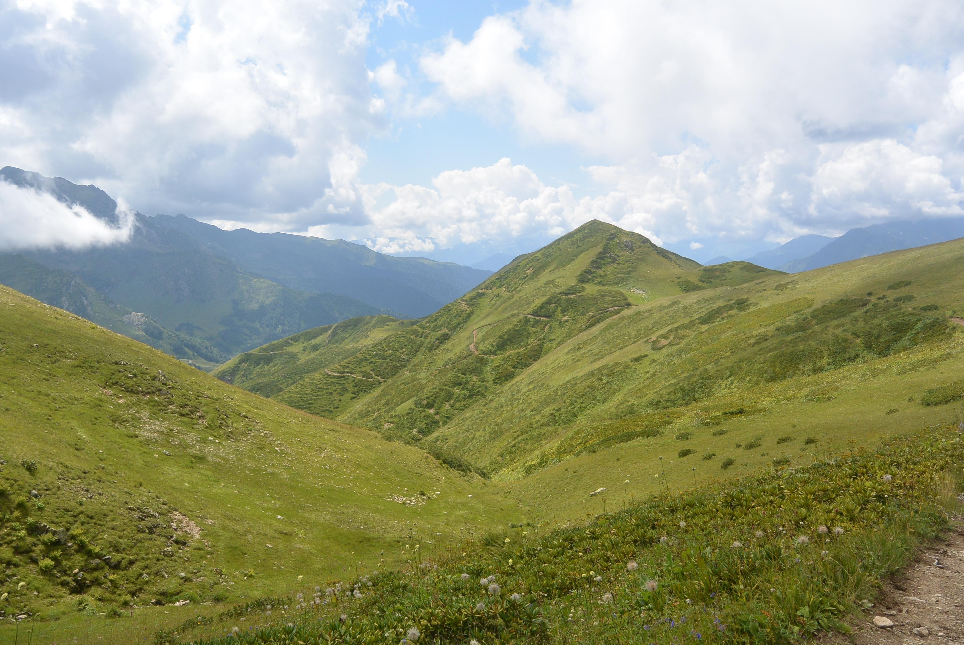 РРНП, Ауадхара