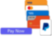 Payments Element Website.png