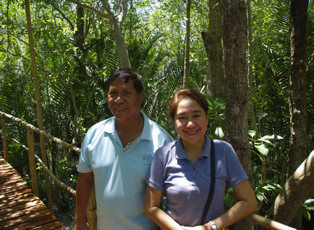 A desire to protect the sea's advance by planting mangroves.