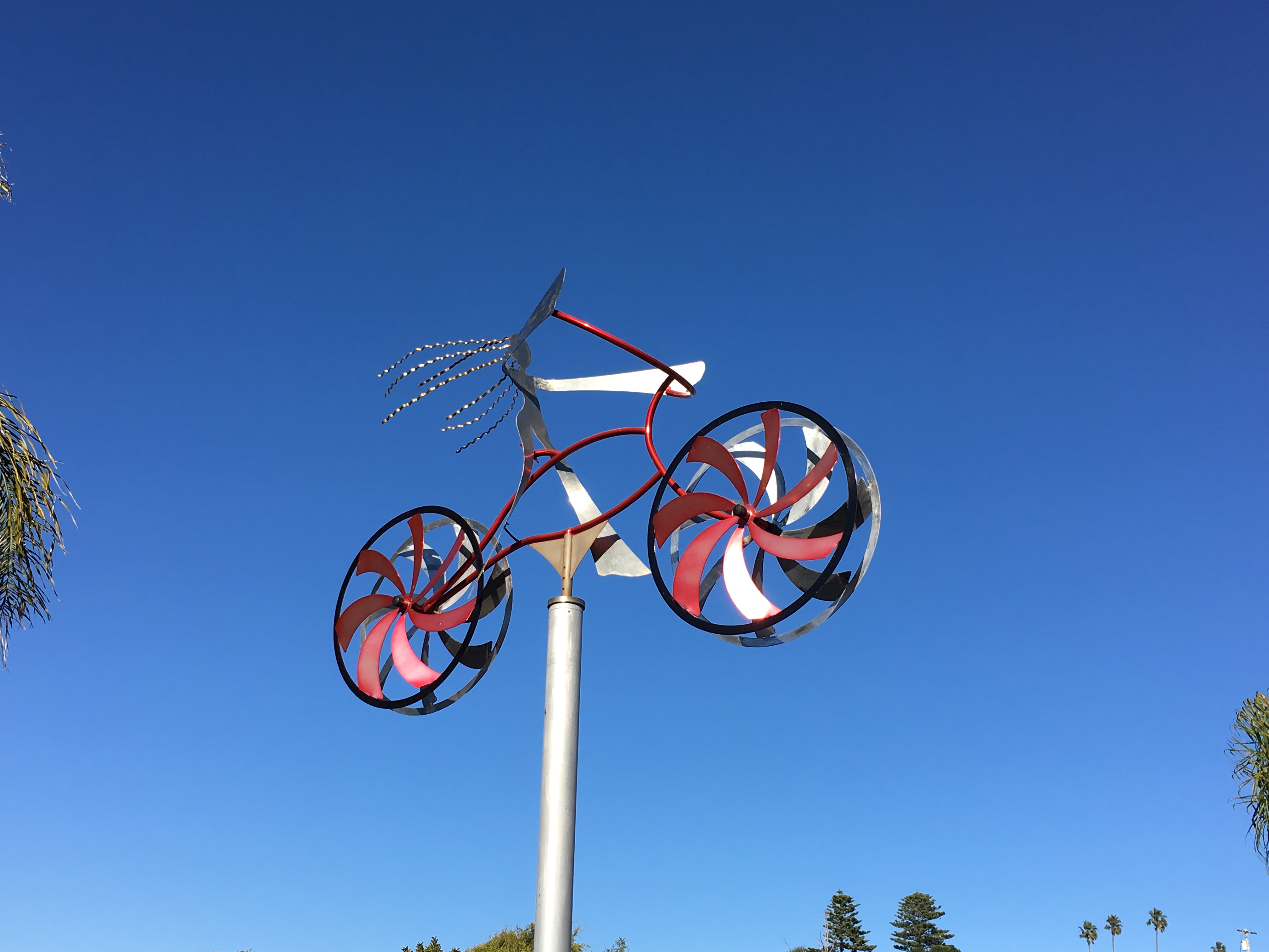 BikeCedros
