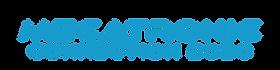 Logo Mecatronic  2020 (bleu).png