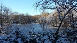 Frozen Lake in December
