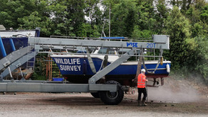 """End of """"lockdown"""" for the wildlife survey boat"""
