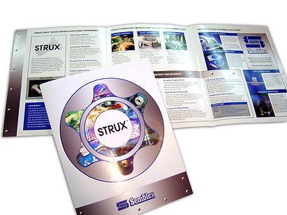 Strux.jpg