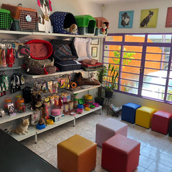 pet shop (3).jpeg
