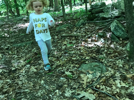 Family Friendly Hikes in Connecticut
