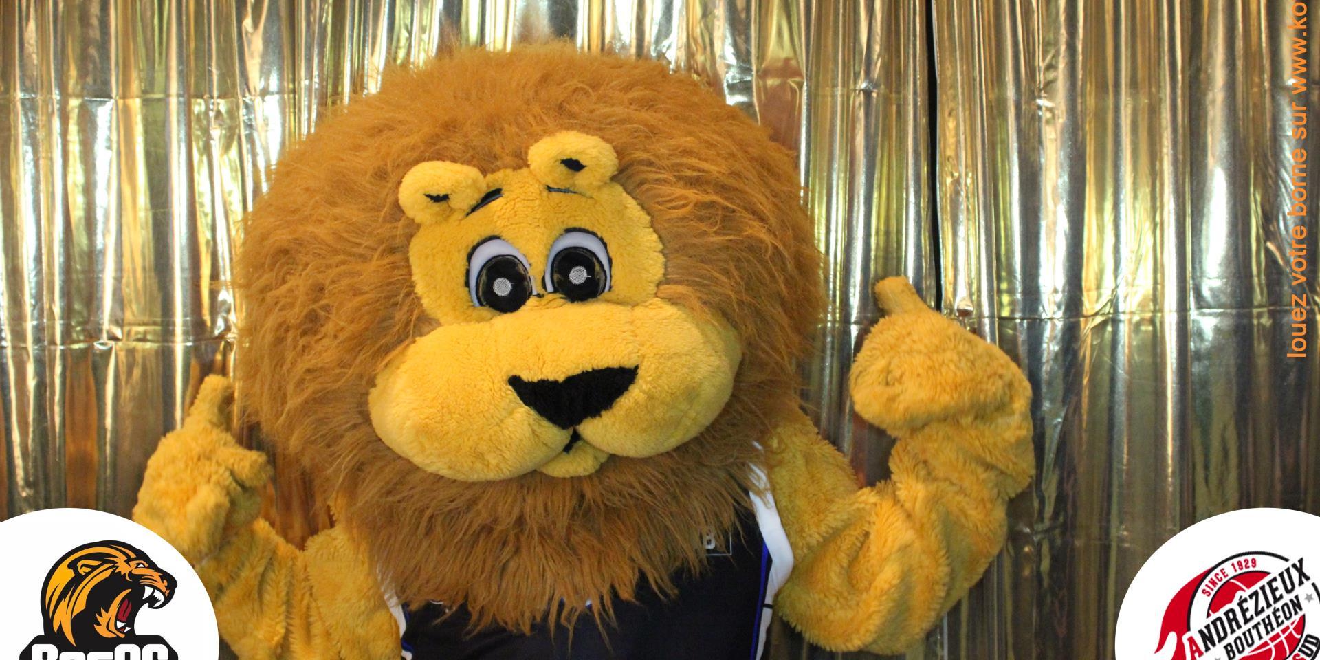 lion besac