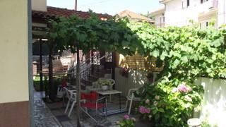 terrace1 garden.jpeg