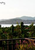 view lake .jpg