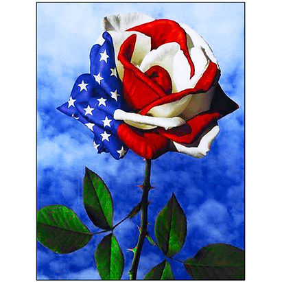 Memorial Day Rose and an American Flag D