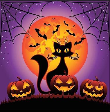 Black Cat Halloween Diamond Painting Kit 35_35cm Spider webs, bats, moon and pumpkins.jpg