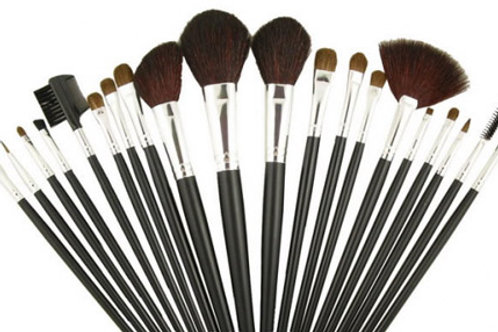 25pc Make up Brushes set in case