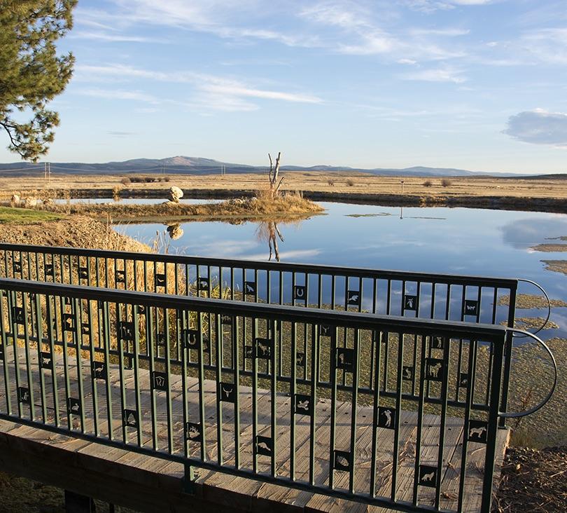 Pond with Hand BridgeSmall