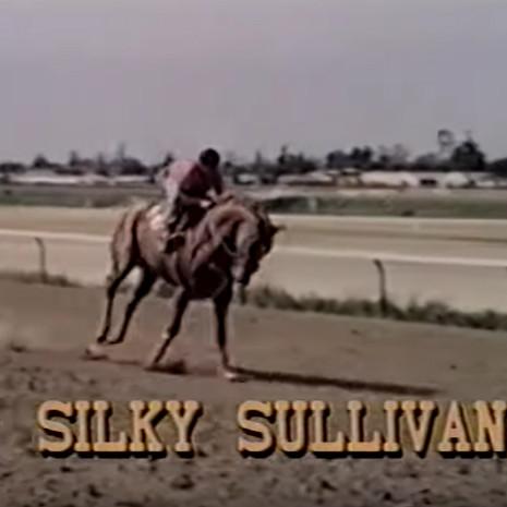 Silky Sullivan