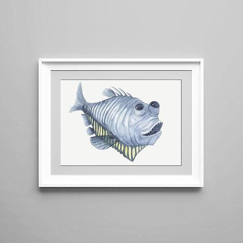 Giclée print Hatchetfish