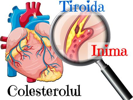 Colesterolul și tiroida