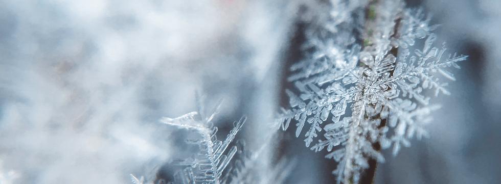 Snowflake_edited.png