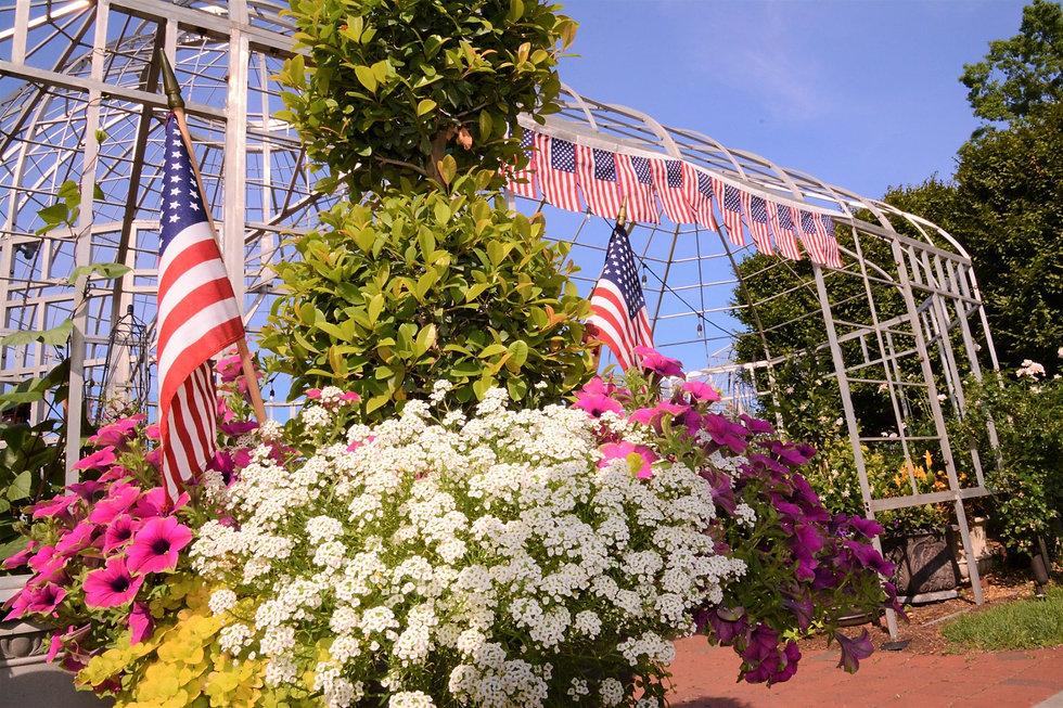 Patriotic Topiary Gorgon.jpg