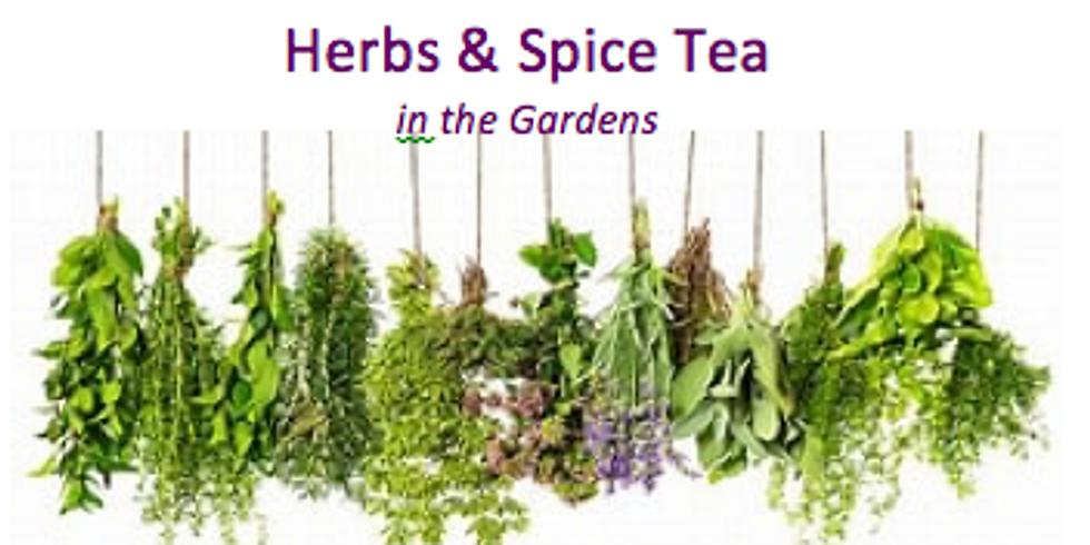 Herbs & Spice Tea