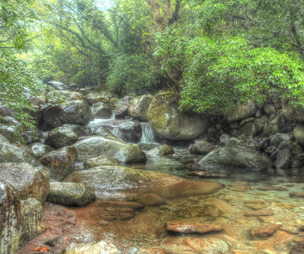 天城連山より流れる渓流