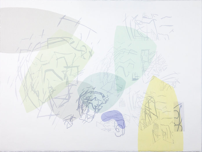 13. Digital and serigraphy print on pape