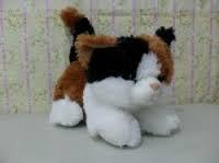 Cat Esmeralda jumbo E0410
