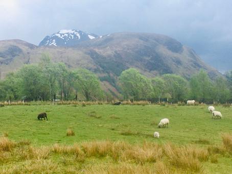 Snow on the Lochaber hills