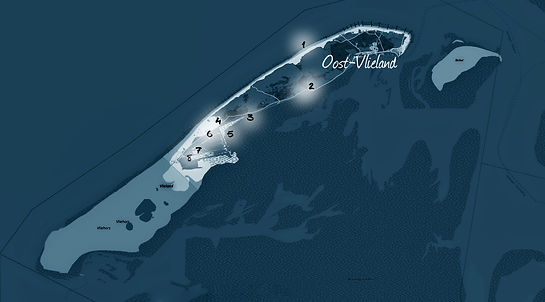 vlieland (kaart).jpg