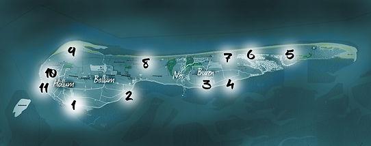 ameland (kaart).jpg