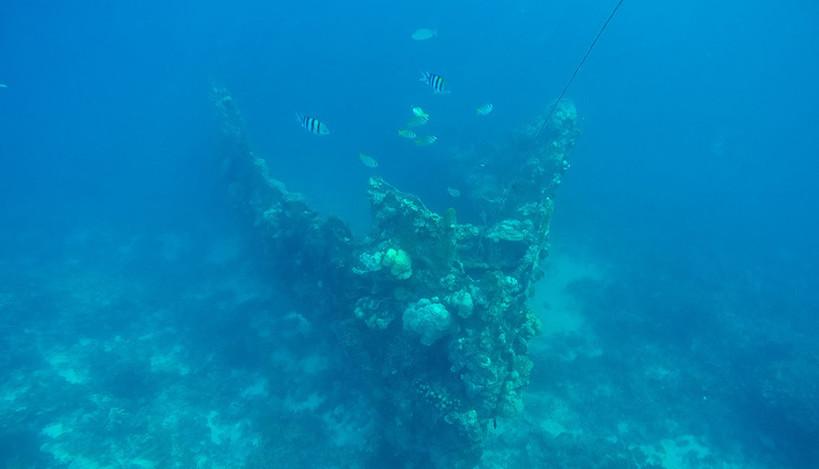 Skeleton Wreck.jpg