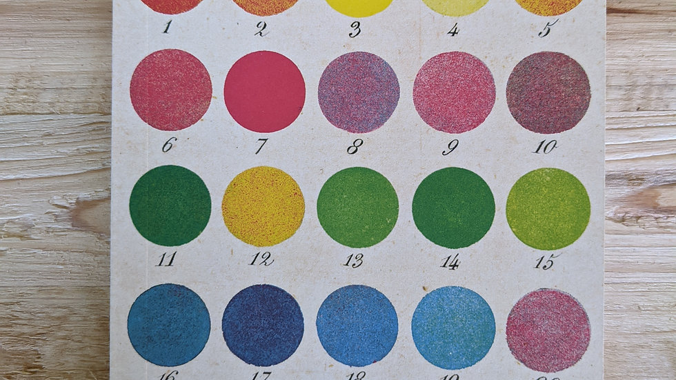 Mini Notebook • Colorwheel Blank Paper