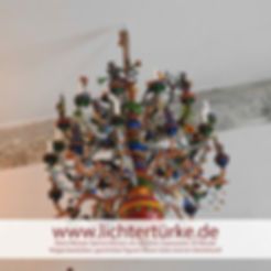 Wiesaer-Spinne-Lichtertürke.jpg
