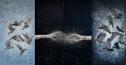 The Crow VI (4 Panels)