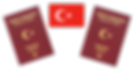 turkeypassport.png